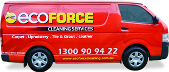 Eco Force  Cleaning Services